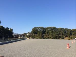 写真 2014-01-01 10 01 36